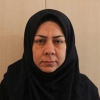 دادسرای ناحیه یک شیراز جیببر حرفهای BRT دستگیر شد - kodoom.com - Kodoom