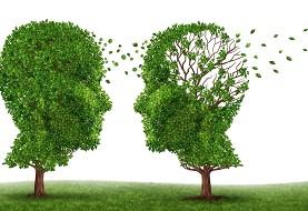 افراد دارای تحصیلات بالاتر کمتر مبتلا به آلزایمر می شوند