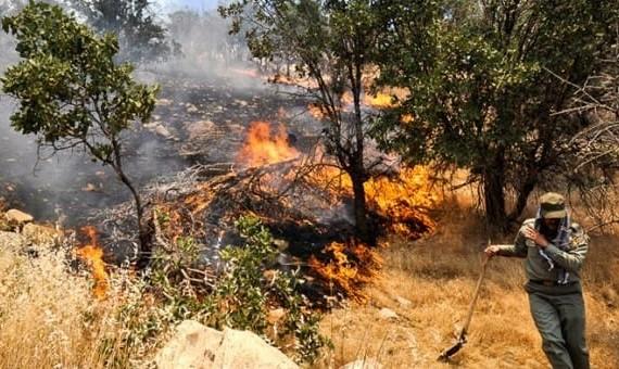 آتشسوزی در پارک جنگلی سرخهحصار