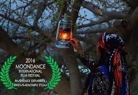 ۳ فیلم کوتاه + نمایشگاه پاپ آپ از فضل الله تاری