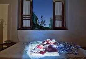 میزگرد هنر ایرانی در غربت با بهار ژاله محمودی، شهروز شکروبی
