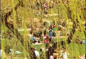 ۱۳ Bedar (Persian Nature Day)