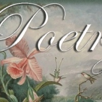 شعر خوانی؛ اشعار عاشقانه هندی، اردو و فارسی