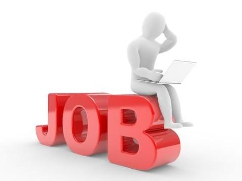 همایش بازار کار برای هموطنان جویای کار