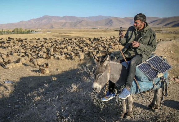 In Pictures: Shepherd in Turkish highlands checks news on ...