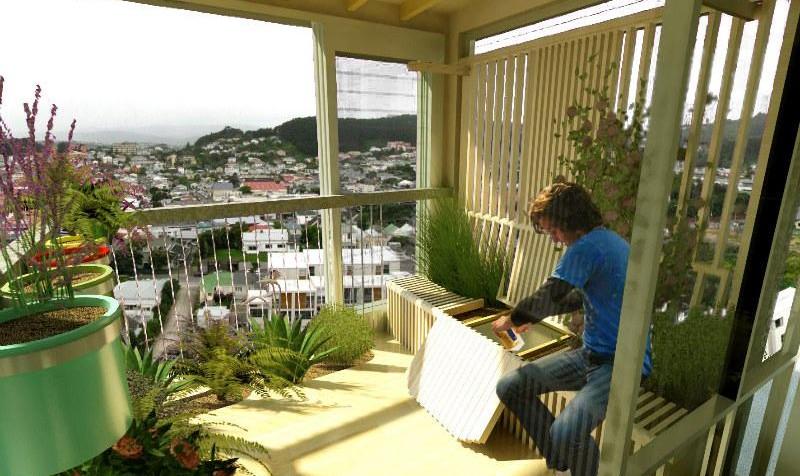 گیاهان آپارتمانی سازگار با شهرهای ایران