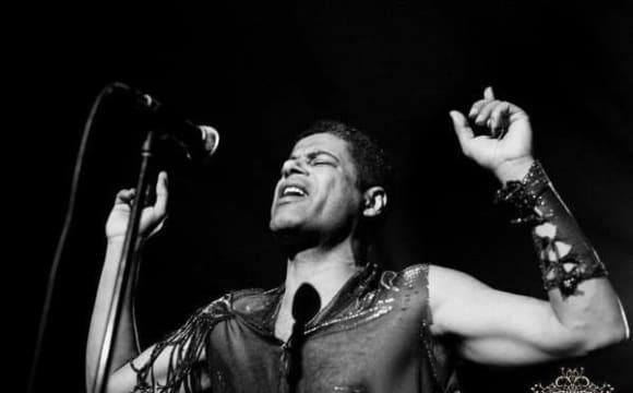 کنسرت ایرانی آفریقایی سعید شنبهزاده