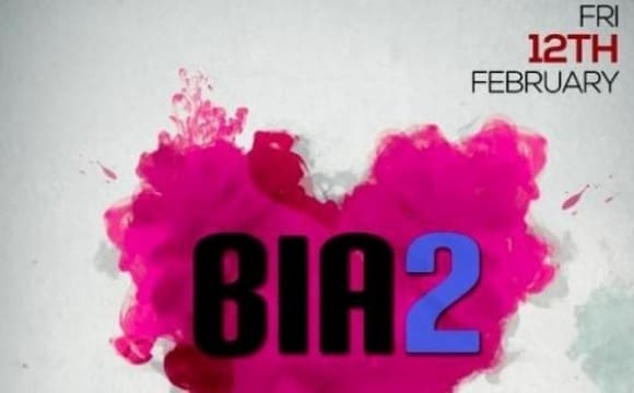 BIA2's Valentine's Party in Washington DC