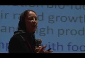 تکنولوژی پیشرفته انرژی از میکرو جلبکها در ایران: سخنرانی دکتر نسرین معظّمی