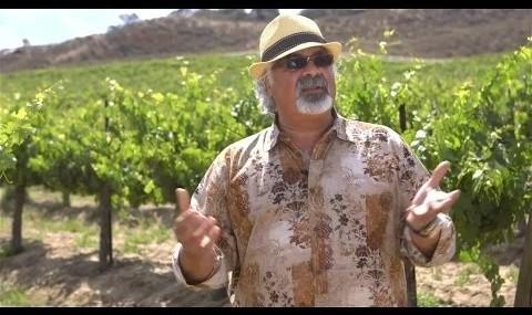 ارائه شرابهای ایرانی برای اولین بار در یکی از مدرنترین ...