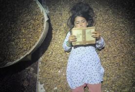 چهار فیلم ایرانی در جشنواره کودکان کانادا در شهر تورنتو به نمایش در میآید