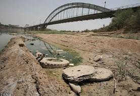 سازمان محیط زیست: کشور در بخش آب ورشکسته شده و تالاب زندهای باقی نمانده است/ یوزپلنگ ایرانی محکوم به نابودی است!