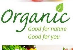 Organic food are indeed better for you, new comprehensive research shows