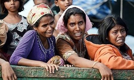 شورای امنیت نسل کشی علیه مسلمانان روهینگیا را محکوم کرد