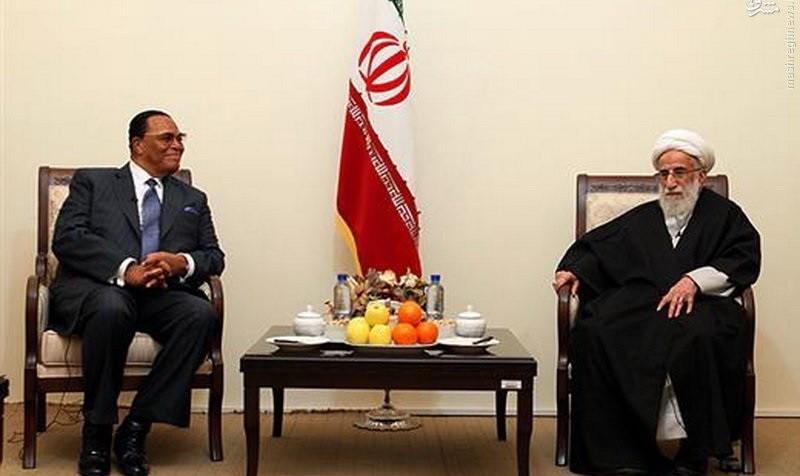 Louis Farrakhan attends Iran's Revolution Day rally
