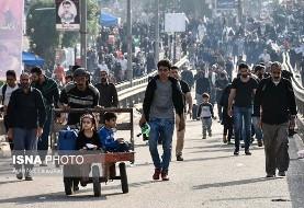۵ هنرمند در پیاده روی اربعین در مسیر نجف به کربلا +عکس