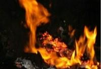 مهار آتش در کارگاه مبلسازی در خیابان ولیعصر/نجات کارگر افغان توسط همسایگان