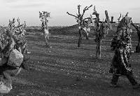 ریزش میوه های سنگی باغ خشکیده/باغ سنگی در معرض تخریب قرار دارد