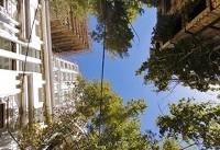 تهران زیر پای برج ها