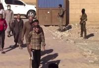 ادعای ائتلاف آمریکائی درباره انتقال داعشی ها به شمال سوریه دروغ از آب درآمد
