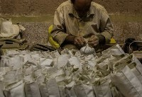 (تصاویر) شغل ۷۰۰ ساله در یزد