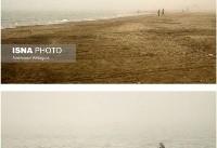 طوفان گرد و خاک در بندرعباس/تعطیلی بنادر مسافری بندرعباس، قشم و هرمز/عکس