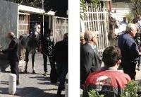 کورس «اسب»ها جلوی در وزارتخانه (+عکس)/ فدراسیون قاطر را جای اسب تأیید کرد