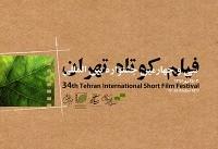 برگ آخر جشنواره فیلم کوتاه تهران ۳۴ ورق خورد/ معرفی برندگان