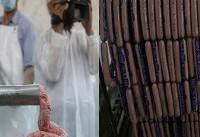 تکذیب توزیع مرغ مرده در کارخانههای سوسیس و کالباس