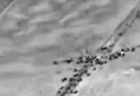 روسیه: ائتلاف آمریکا از داعش حمایت میکند