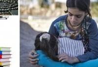 اعلام اسامی ۴۳۴ جانباخته زلزله کرمانشاه