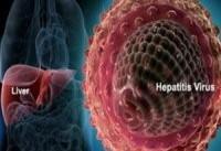 هپاتیت گیاهی رو به افزایش است