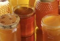 وفور عسلهای قاچاق در بازار/ افزایش ۳ برابری قیمت ملکههای چینی!