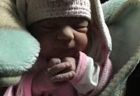 پنجمین نوزاد در سرپل ذهاب به دنیا آمد + عکس