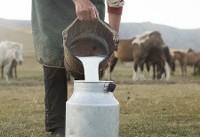 شیر اسب چه خواصی دارد؟