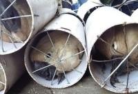 جاسازی بیرحمانه ۱۲۵ پرنده قاچاق در لوله در اندونزی (عکس)