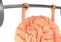 یک ترفند برای جوان نگه داشتن مغز