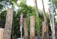 عزل شهردار ناحیه ۲ منطقه ۱ شهرداری تهران بابت قطع درختان خیابان ولیعصر