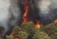 ۱۵هکتار از جنگل&#۸۲۰۴;های تنکابن در آتش سوخت