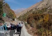 نجات زنی در ارتفاعات درکه