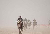 پایان مسابقات شتردوانی خوسف با معرفی نفرات برتر