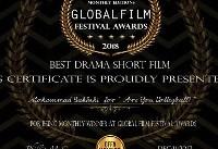 موفقیت فیلم ?Are you vollyball در جشنواره گلوبال امریکا