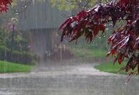 کاهش ۵۰ درصدی بارش در فلات مرکزی/ وضعیت بحرانی بارش در برخی حوضهها