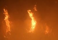 آتش سوزی گسترده در انبار چوب ۱۰ هزار متری