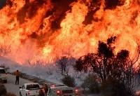 کمک مالی یک میلیون دلاری اپل برای مهار آتشسوزی کالیفرنیا