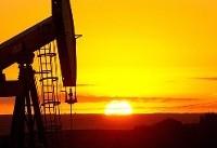افزایش بهای نفت و تثبیت فلز زرد