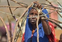 Cloaked in rags and dust, Somalis flee looming famine