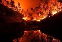 آتشسوزی جنگلهای پرتغال با ۲۴ کشته | تصاویر