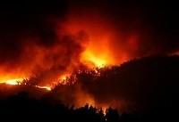 آتشسوزی گسترده در پرتغال دهها کشته و زخمی بر جای گذاشت
