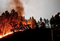 ۲۴ کشته در آتشسوزی جنگلهای پرتغال